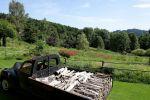 Berchigrange - ein überraschender Garten in den Vogesen