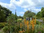Ventnor Botanic Garden, Isle of Wight, GB
